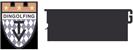 TV Dingolfing e.V. | Dingolfinger Halbmarathon - Juniors - Badminton - Basketball Dukes - Handball - JuJutsu - Leichtathletik - Tischtennis - Turnen und Gymnastik - Volleyball - Fasching